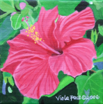 Hibiscus.png (1146693 bytes)