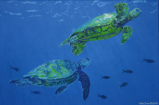 sea_turtle_2_06.png (299960 bytes)